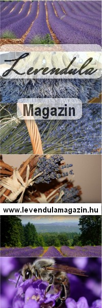 Levendula Magazin